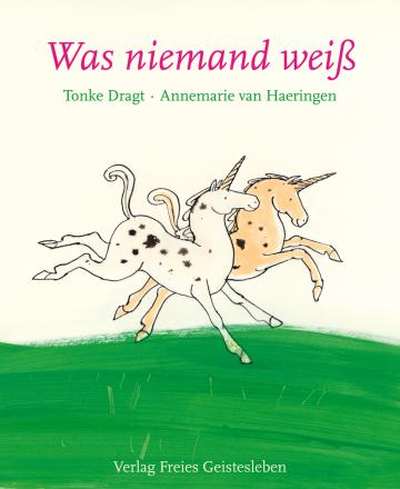 Was niemand weiß  Tonke Dragt    Annemarie van Haeringen